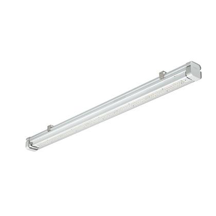 Pacfic LED TW3